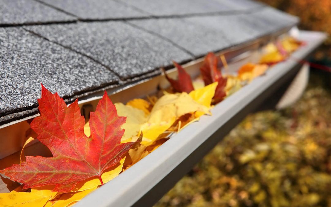 Costs of Neglecting Your Gutters